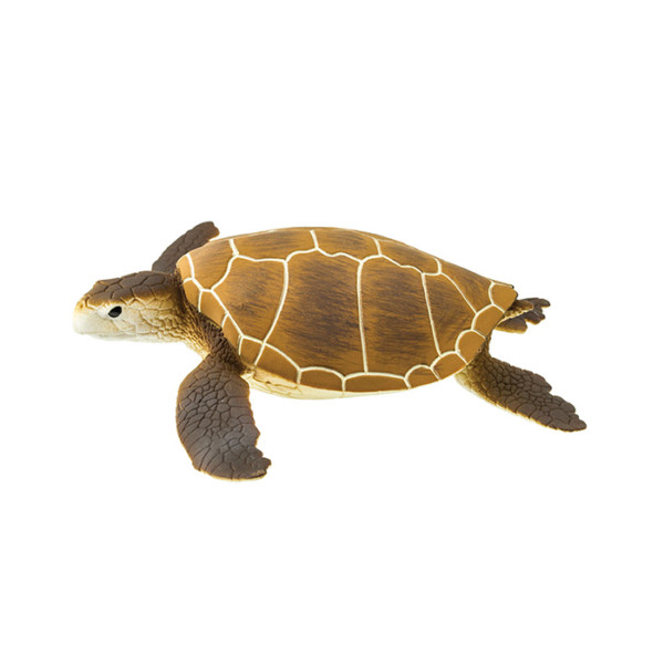 TORTUGA VERDE MARINA - Wild Safari® Sea Life - 9x9x3