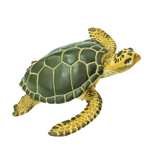 TORTUGA VERDE MARINA - Wild Safari® Sea Life - 8x7x2